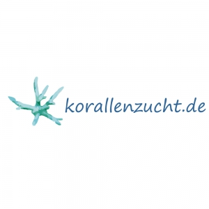 Meeresaquaristik News: Special-Offer until Christmas: 20% of all* products from Korallen-Zucht