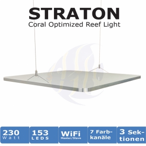 Meeresaquaristik News: The new ATI STRATON - pre-order now!