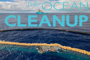 Meeresaquaristik News: Clean oceans instead of wine and chocolate