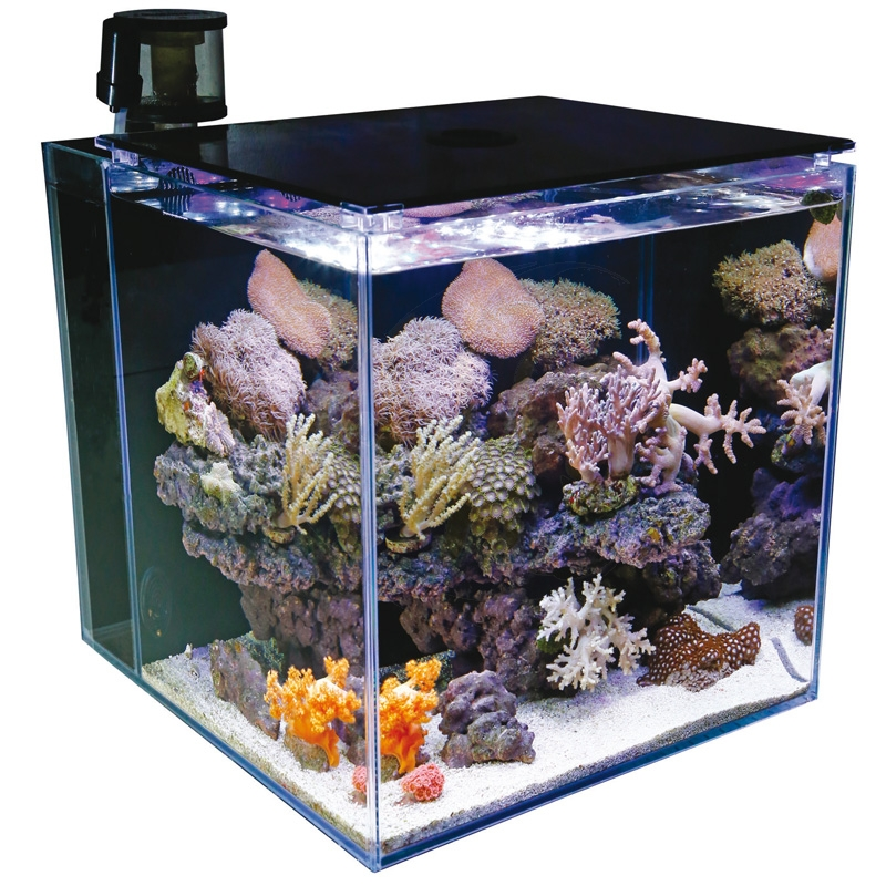 tmc microhabitat 60 marine white nano meerwasseraquarium. Black Bedroom Furniture Sets. Home Design Ideas