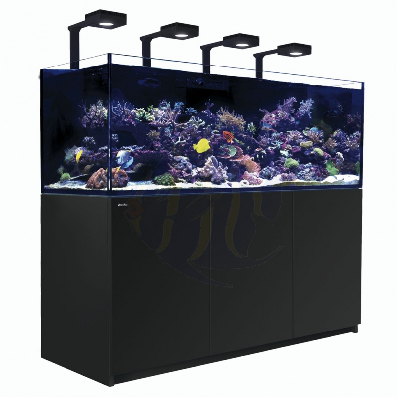red sea reefer xxl 750 deluxe komplettsystem schwarz r42273 mrutzek meeresaquaristik gmbh. Black Bedroom Furniture Sets. Home Design Ideas
