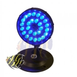 AquaLight 27x Mini-LED blau (MOON-07)